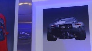 Cats - a Jaguar Cars Visual Documentary