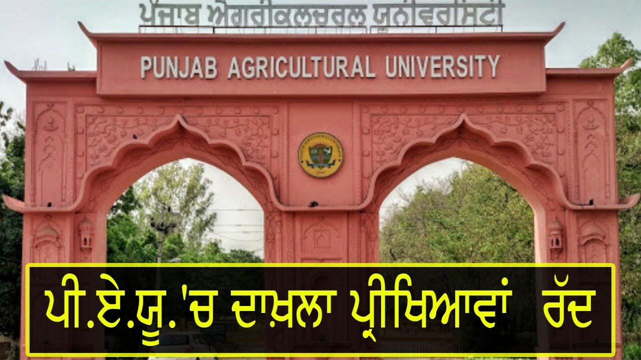 Punjab Agricultural University, cancels entrance exams to undergraduate courses
