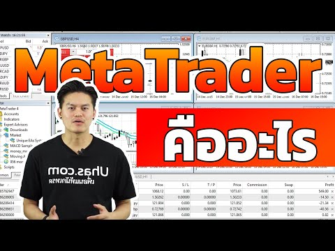 โปรแกรม MetaTrader 4 & MetaTrader 5 (MT5) คืออะไร - การเงินวันละคำ EP. 35