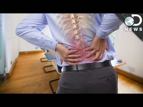 3 Scientific Reasons Why Your Back Hurts