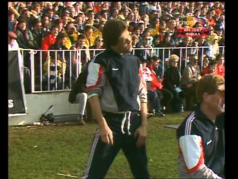 Rugby 1987, Final. New Zealand v France