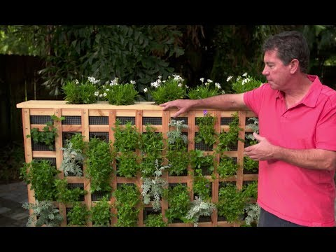 How to build a moveable living garden wall with jim - How to build a living wall ...