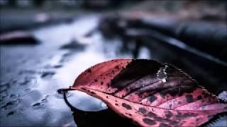 「最後の雨」は1992年にリリースされた中西保志の2枚目のシングルだが、...