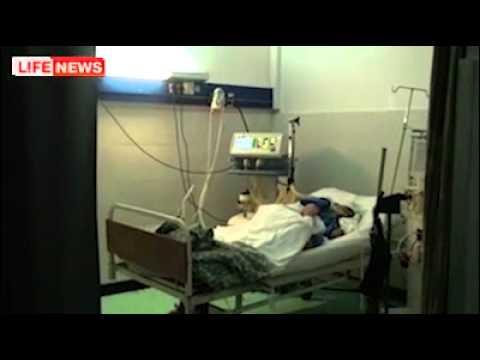 Акулу-убийцу в Египте сняли на видео