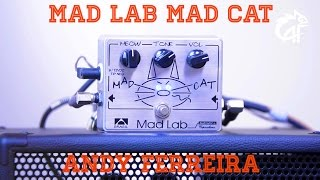MadLab MadCat - Andy Ferreira Reviews #22 - [Eng Sub]