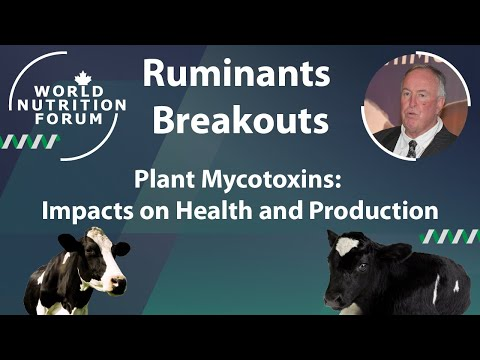 WNF 2016 Ruminants Breakouts: 07 Plant Mycotoxins: Impacts on Health and Production