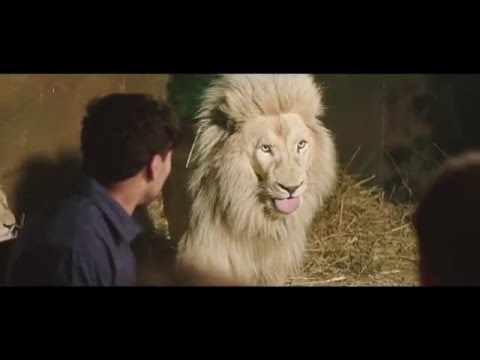 Jamala Wildlife Lodge - Canberra 30s TV ad 2016