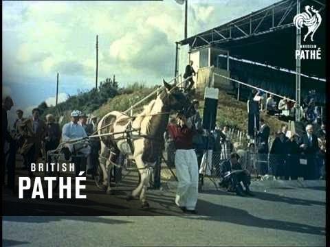 Horse Trotting (1960)