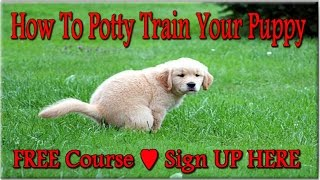 **How To Potty Train YOUR Puppy ♥ FREE Course ♥ Sign UP HERE ↓↓****