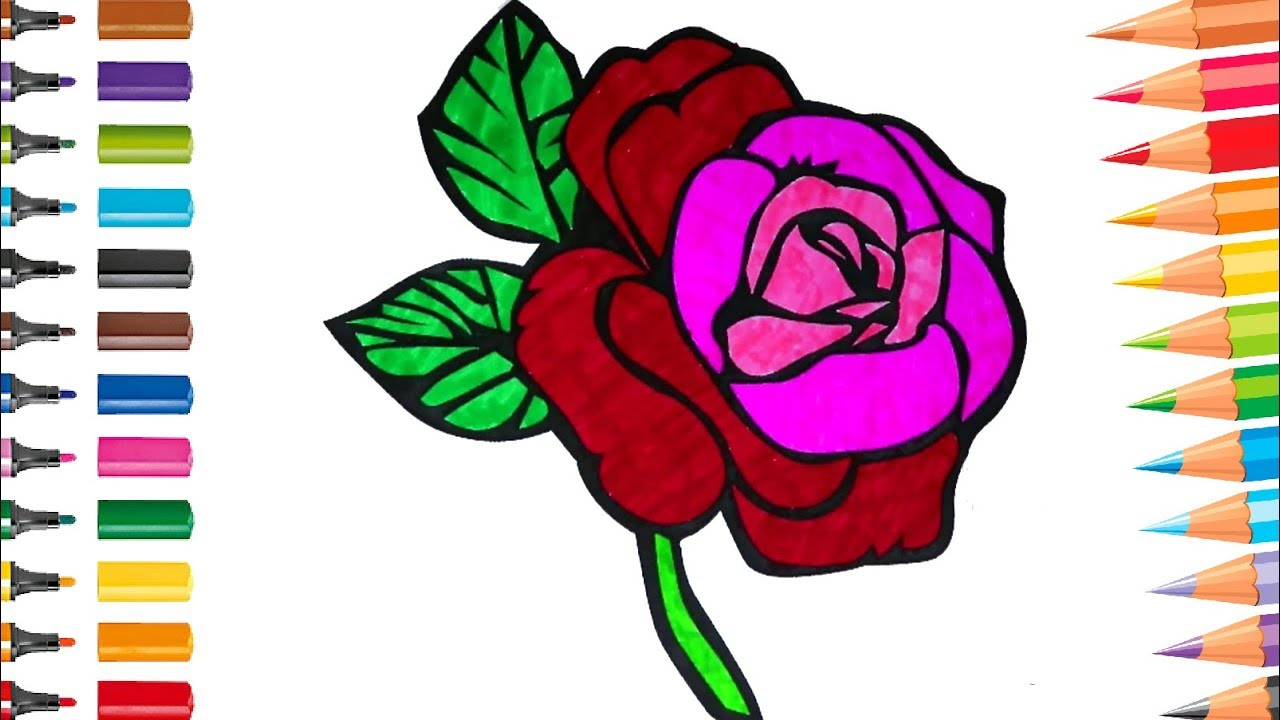 Pink Rose Colouring Flowers Coloring Pages for Kids - YouTube