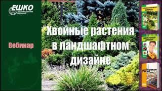 видео Садово-парковый ландшафтный дизайн