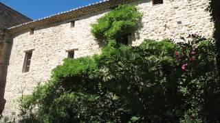 Le Grand Barsan - Chambre d'hôtes et Gites - Binnentuin - Vaison la Romaine - Vaucluse - Provence