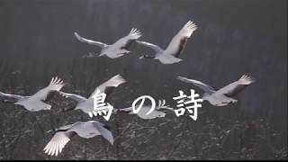 1980年に始まったドラマ「池中玄太80キロ」シリーズの2作目で挿入歌と...