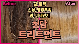 [김활란뮤제네프 헤어] 청담동 여배우 미용실에서 미세먼…