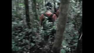 gunung gede - pangrango jalur abah emi