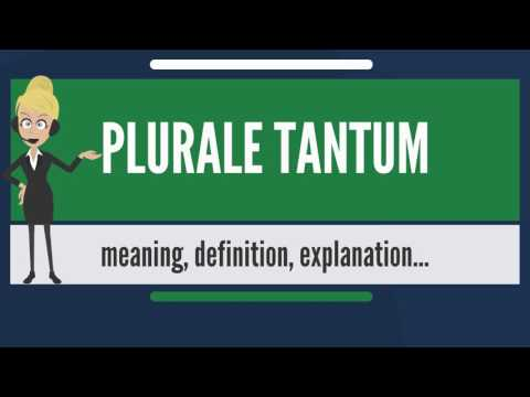 What is PLURALE TANTUM? What does PLURALE TANTUM mean? PLURALE TANTUM meaning & explanation