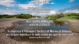 Villaggio I Sorbizzi - Dune di Bibbona e Fossa Camilla