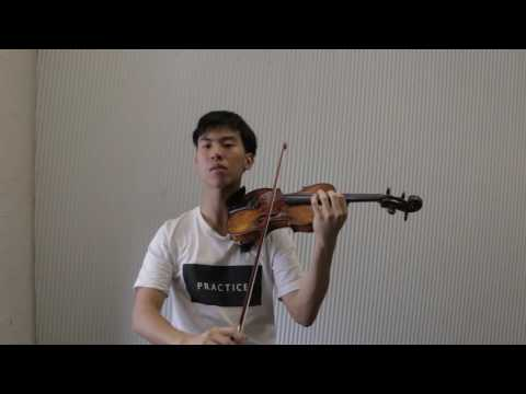 How I Practice The Violin - A Framework for Those Who Are Busy