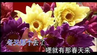 韓寶儀  待嫁女兒心  【KARAOKE】Han Bao Yi『DAI JIA NV ER XIN』1961年電影「燕子盜」插曲 甜歌皇後80年代百萬暢銷經典國語懷舊金曲新馬歌後華語老歌精選流行甜美