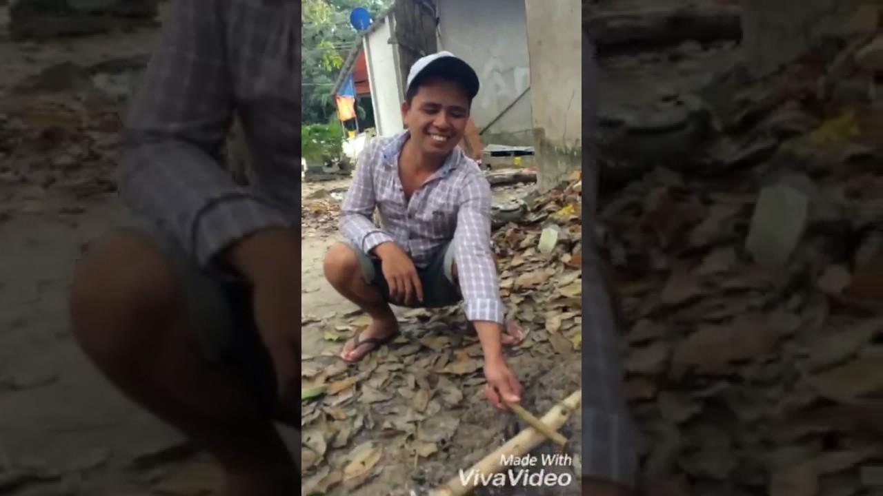 Cá lóc nướng chui ( Đặc sản miền tay Nam Bộ)