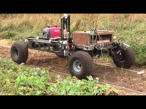 Fully Autonomous Weeding