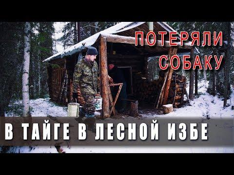 Поход в тайгу в лесную избу! 🌲 Зима в ноябре. ❄