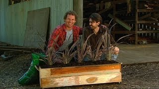 Better Homes And Gardens - Diy: Aaron Barton Recycled Planter Build