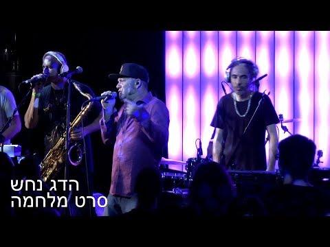 Hadag Nahash - Seret Milhama Live in New York 05/02/18 הדג נחש - סרט מלחמה