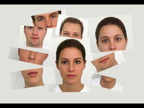 الفرق بين علم الفراسة ولغة الجسد