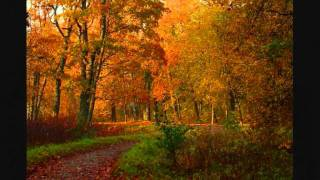 Гарик Кричевский - Осенний Вечер