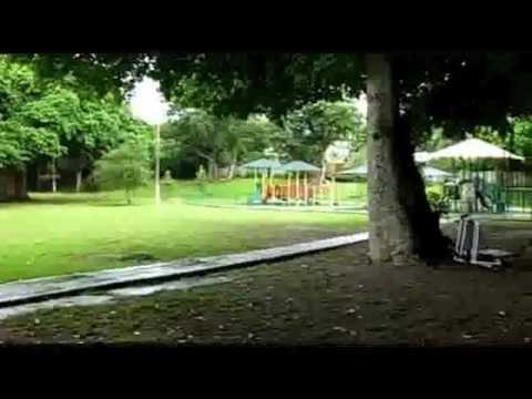 Merrie Christmas Park, Coconut Grove Florida - YouTube