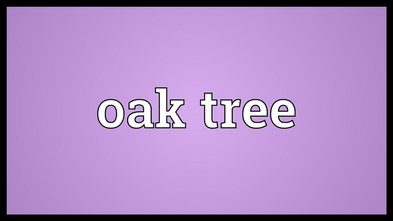 Oak Tree Meaning