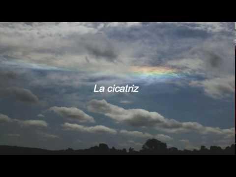 Camila Cabello - Scar Tissue (Traducida al Español)