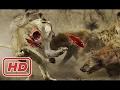 Heyenas Vs Lion - Amazing Predators Fight Till Death #27 (Only The Strongest Survive)