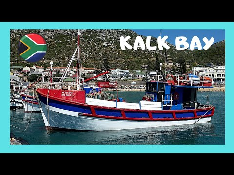 CAPE TOWN, fishing boat arriving and offloading fish at KALK BAY (South Africa)