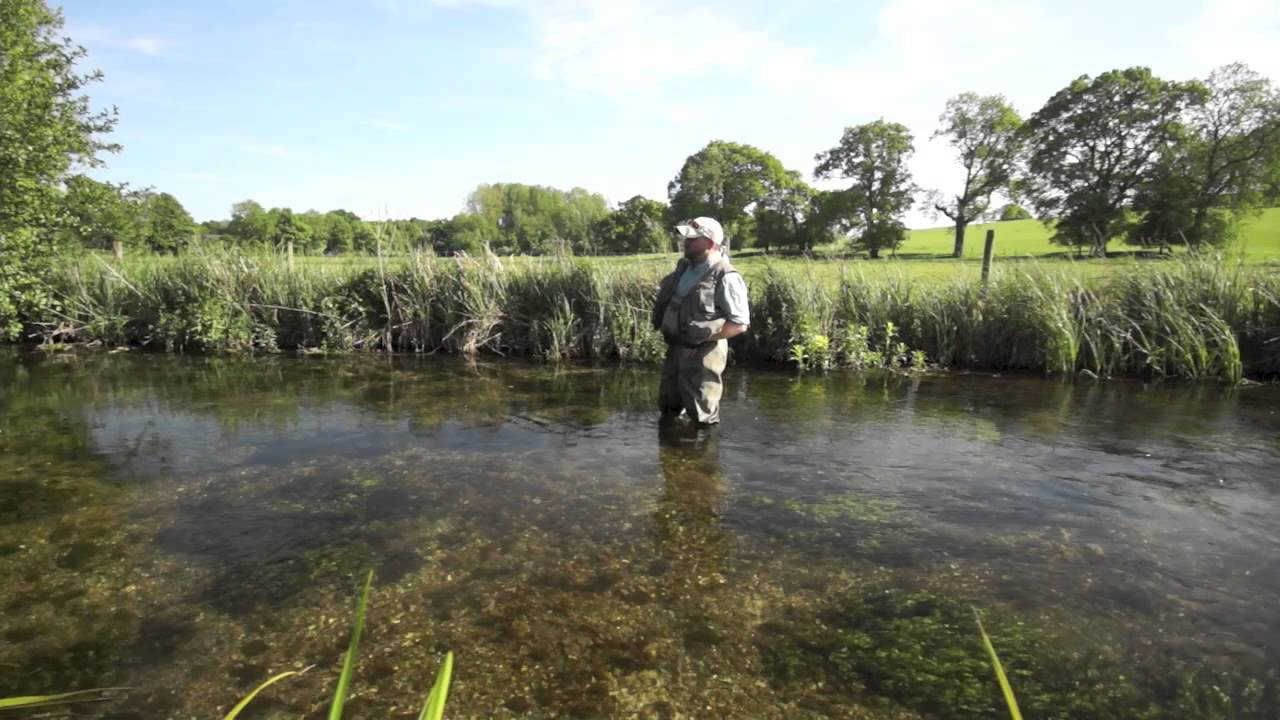 Fly fishing a chalkstream at mayfly time hints tips for Best trout fishing in new hampshire