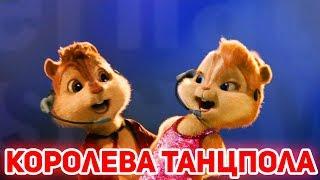 Элвин и Бурундуки поют Королева танцпола (Джаро & Ханза)