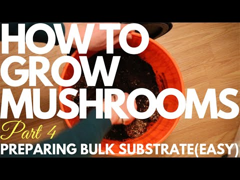 How To Prepare Bulk Substrate(Easy Method) - How To Grow Mushrooms - Part 4