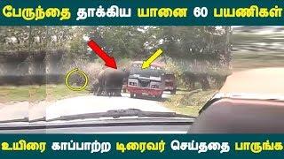 பேருந்தை தாக்கிய யானை 60 பயணிகள் உயிரை காப்பாற்ற டிரைவர் செய்ததை பாருங்க   Tamil News  