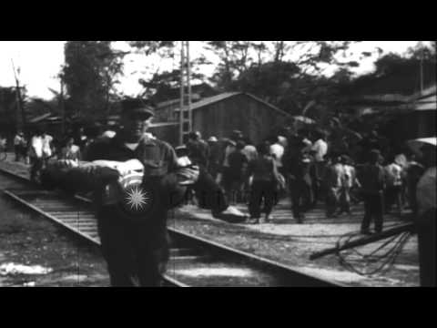 A Viet Cong grenade attack kills one and injures 22 and American soldiers help th...HD Stock Footage
