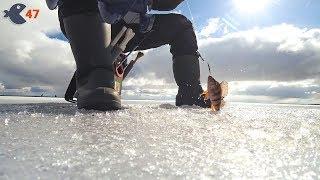Всё, зимней рыбалки больше не будет! Закрыл сезон.