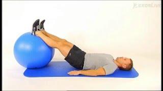 Kiropraktorgruppen - Slik utfører du øvelsen bekkenhev og lårcurl med ball.