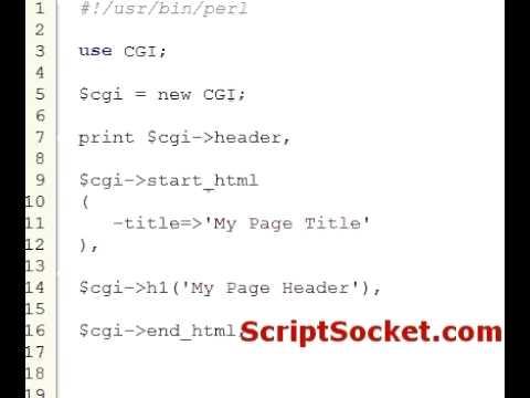 Perl CGI.PM tutorial