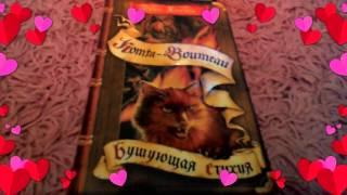 Обзор книги коты воители бушующая стихия 4 часть