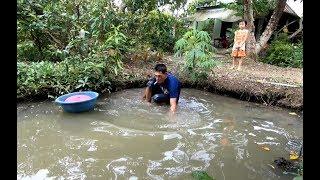 Đệ mò cá bắt bắt ốc hái ổi đem về Bến Tre - Hương vị đồng quê - Bến Tre - Miền Tây