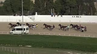 Vidéo de la course PMU PREMI CARINO POWER