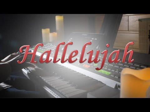 hallelujah- -leonard-cohen- -instrumental-cover