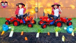 หนูยิ้มหนูแย้ม   ขับรถไถเก็บผัก Drive a Tractor to Collect Vegetables