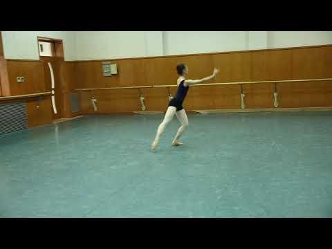 Ballet Technique-2014 jumps