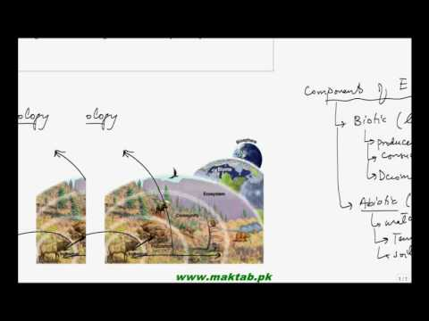 FSc Biology Book2, CH 25, LEC 2; Autecology, Syncology, Biotic and Abiotic Component of ecosystem